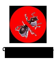 http://www.techcontrol.com.ve/mercadolibre/control-hormigas